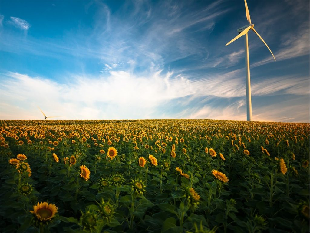 Power Your Life With Renewable Energy From Inspire